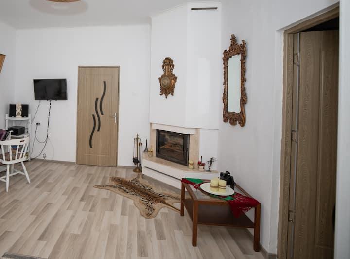 Central Cozy Vintage Apartment Intim,  Arad