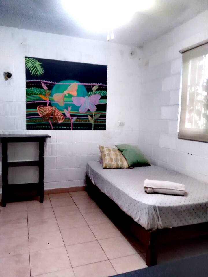 Private Room In The BEST Location In Playa