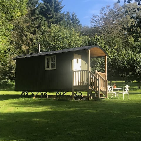 Cruck Cottage Shepherds Huts - Orchard Hut