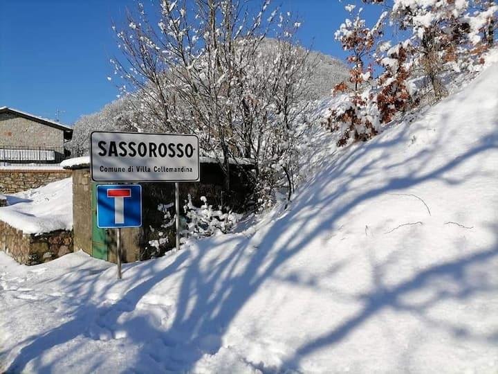 Casa dell'edera