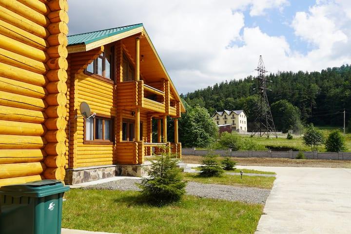 Log House Villa #4
