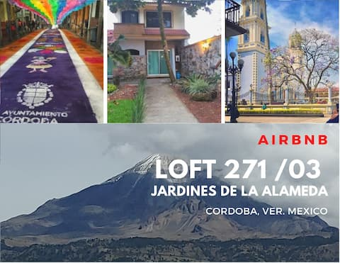 Loft_271 / 03 avenue gardens. Cordoba, Mex