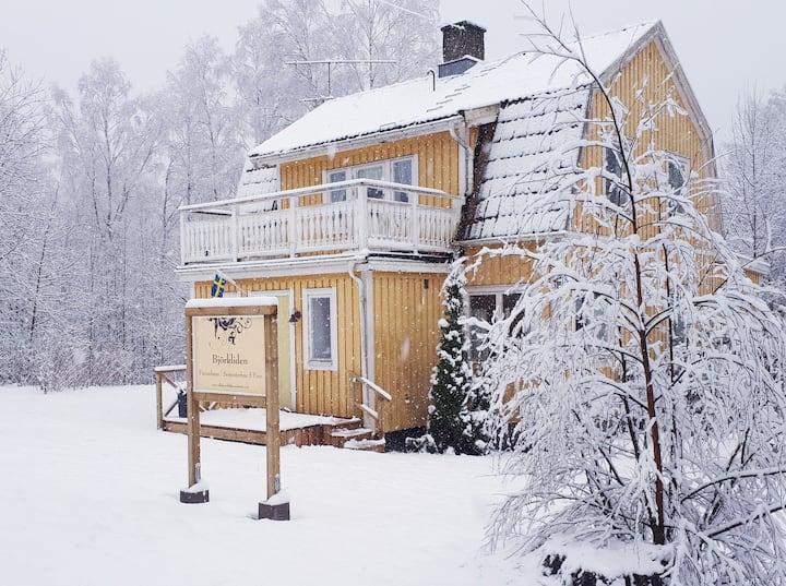 Gemütliche Schwedenvilla in der Nähe des Iväg-See