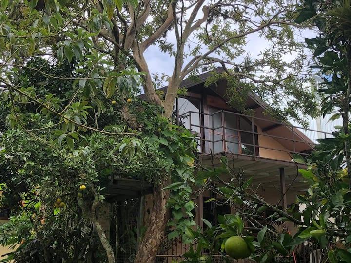 Casa rural A