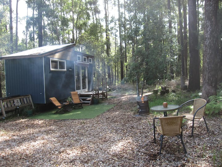Tiny House koala forest stopover just off highway