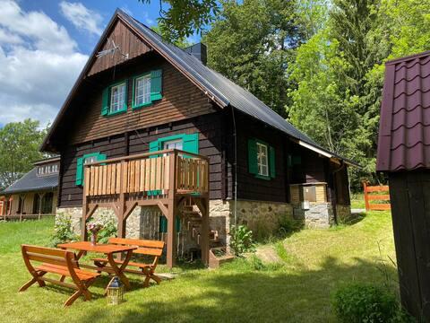 True Heart of Sumava- sauna,wifi, friends & family