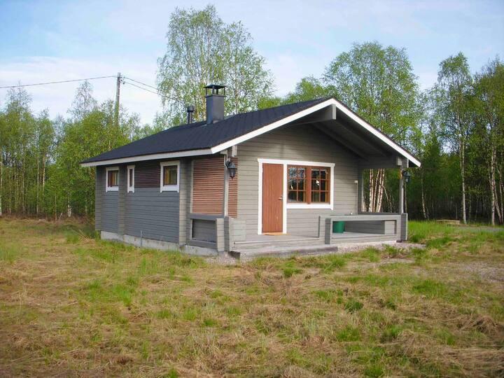 Anna Aurora - a northern lights cabin in Lapland B