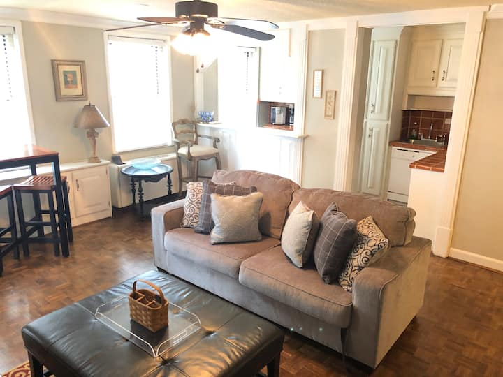 9K Downtown Digs RIGHT by All Attractions!