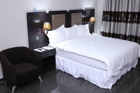 Aliz Ambruz Hotel - Hilton Standard Room