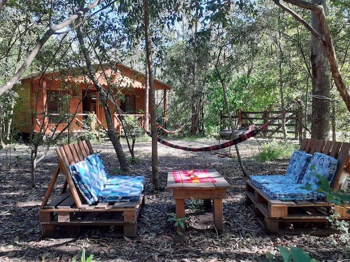 Cabaña independiente en el bosque cerca del río