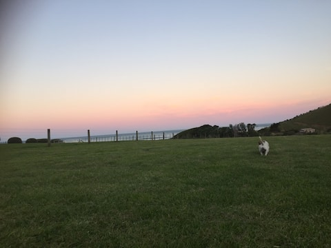 Whangaehu Beach  Escape