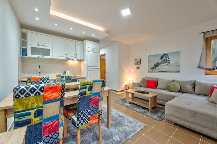 Krila Zlatibora Deluxe Apartment