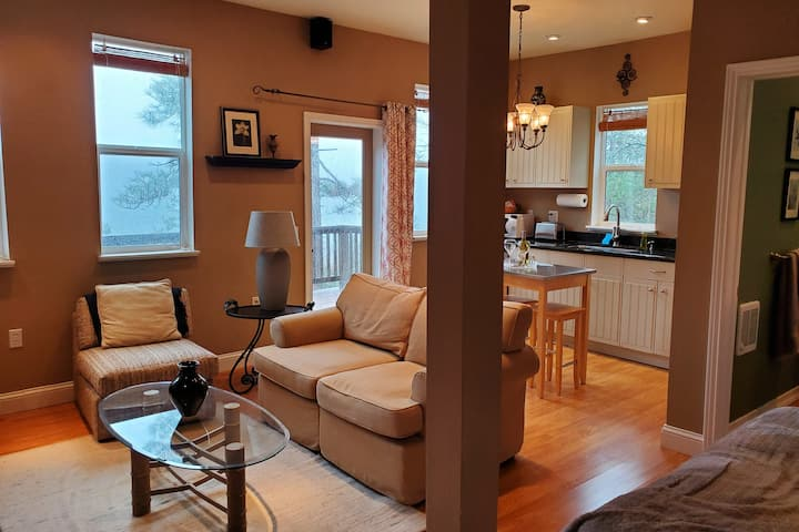 Stylish Cobb Mountain studio with deck and VIEWS!