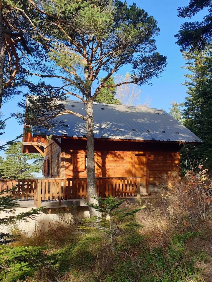 Châlet traditionnel Station de ski  Chabanon 04
