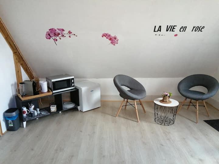 Jolie chambre avec salle d'eau privée