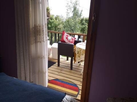 precordillera wife, tv,cocinilla terraza, baño