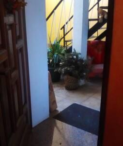 Puerta entrada 81 cm