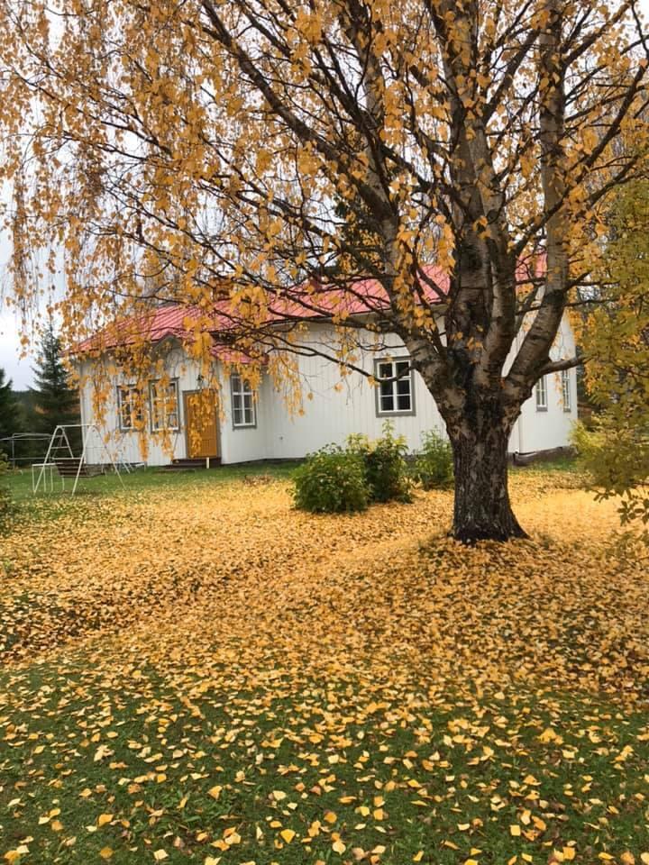 Vanha Saarikko Guesthouse in Pello, Lapland