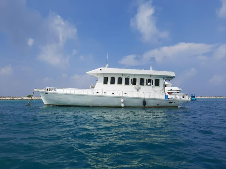 Best liveaboard tours in Ari Atoll - Kaafu Atoll