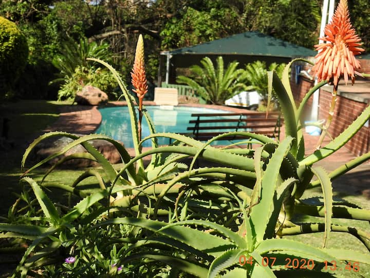 Self catering cottage in Toti and is pet friendly
