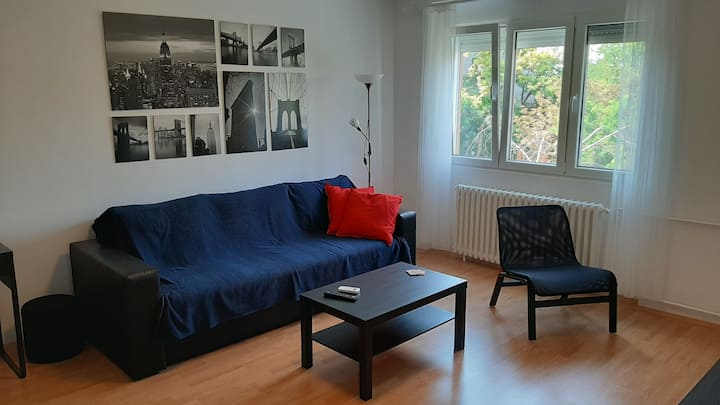 Two Room Apartment with Balcony and Fast WiFi