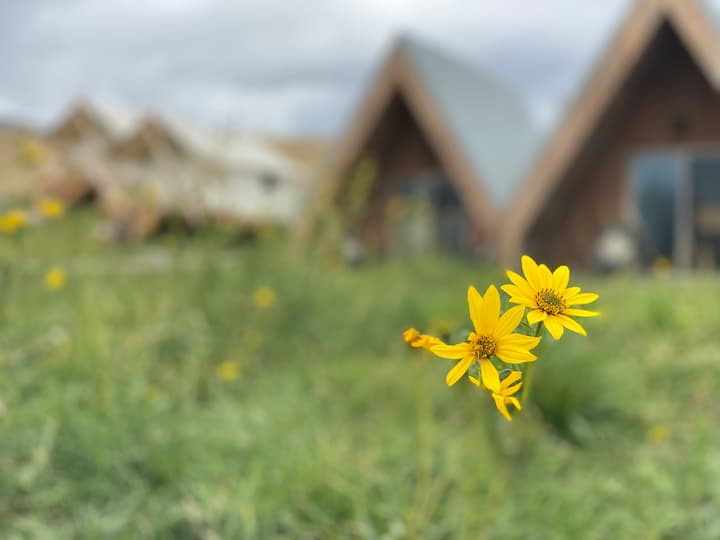 A- Frame @ TINY TOWN CAMPGROUND- Boutique Camping