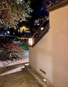 Fully lit-Extra wide pathway and door with 1 concrete step down (no railings) before you reach doorway to entrance.