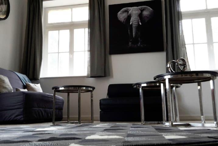 Espace salon avec canapé convertible pour le couchage des enfants (Dimension du couchage : 140 x 190)