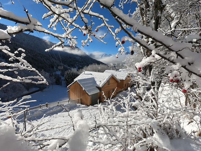 Chalet in Vaujany-Sleeps 10 new Build in the Alps