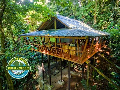 Gîte du cacao - Maison des arbres