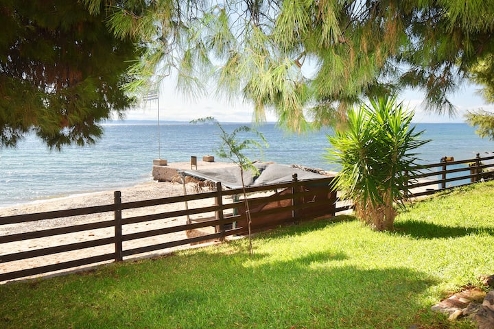 Barlee Beachfront House, Metamorfosi