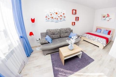 Уютная квартира-студия на Пензенской
