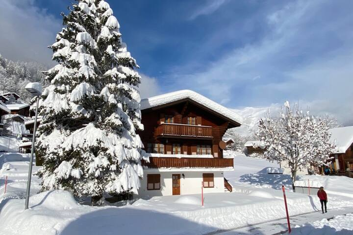 Cosy Apartment in Swiss Chalet