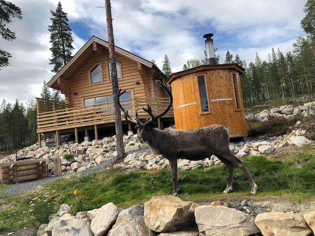 Timmerstuga Idre Fjäll. Mountain Camp Fjällbäcken