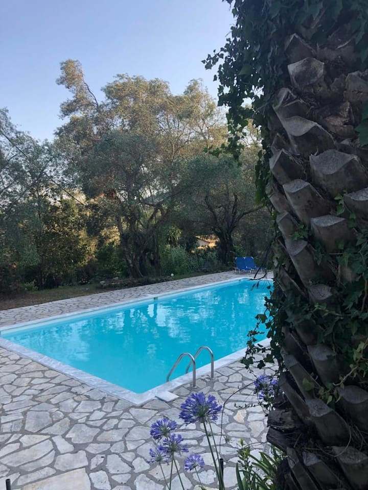 Magnolia House with sharing pool-Dimoulitsa Villas