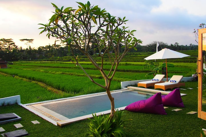 2 BR Villa with open view of rice paddies & sunset