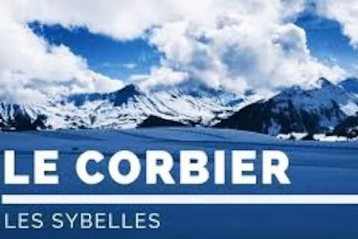 Studio coté sud - pistes Les Sybelles Le Corbier