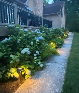 Walkway to private entrance at night
