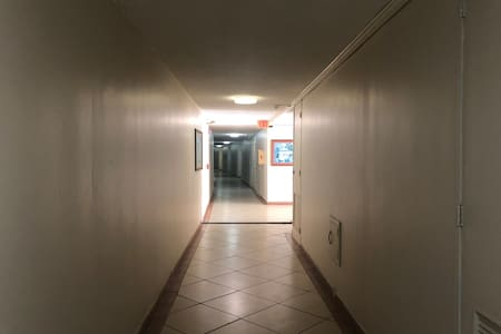 Hallway to the apartment. Coming from the elevators.