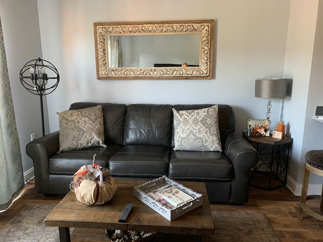 Cozy downtown loft overlooking the James River.
