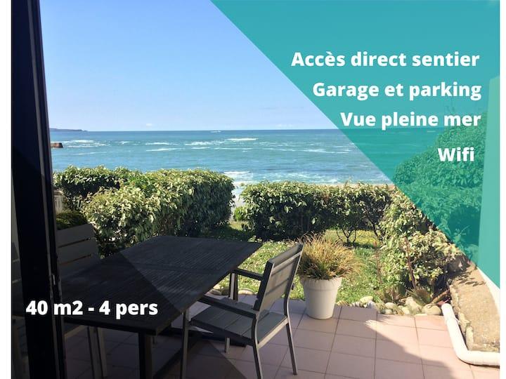 Au calme, pleine vue mer, T2 jardin, parking privé