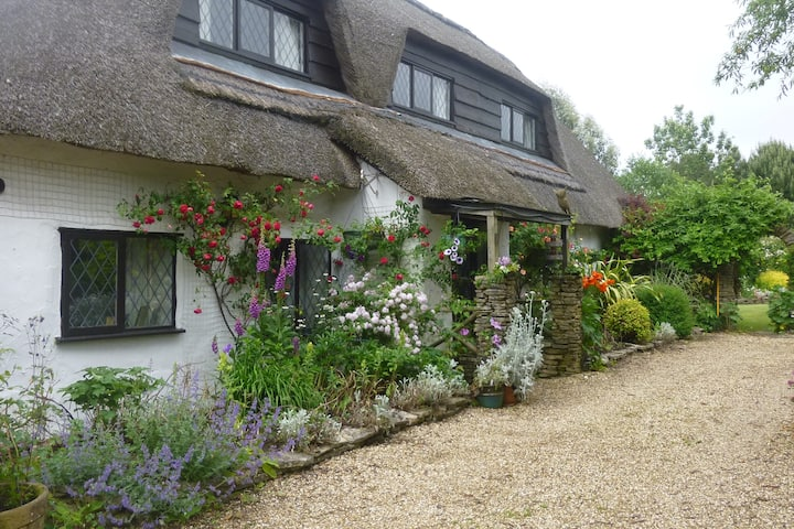 New Forest, Cobweb Cottage Retreat