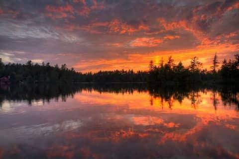 3 Birches on Rainbow Lake