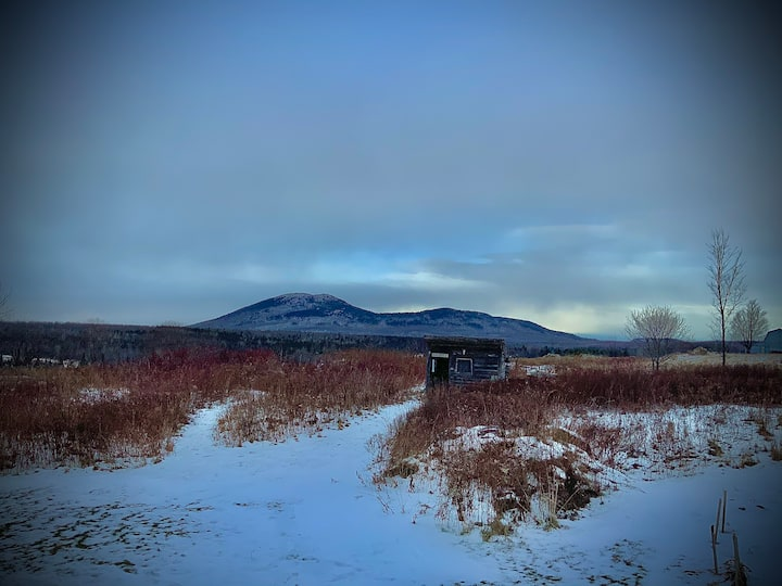 Tranquillité et vue magnifique sur la montagne
