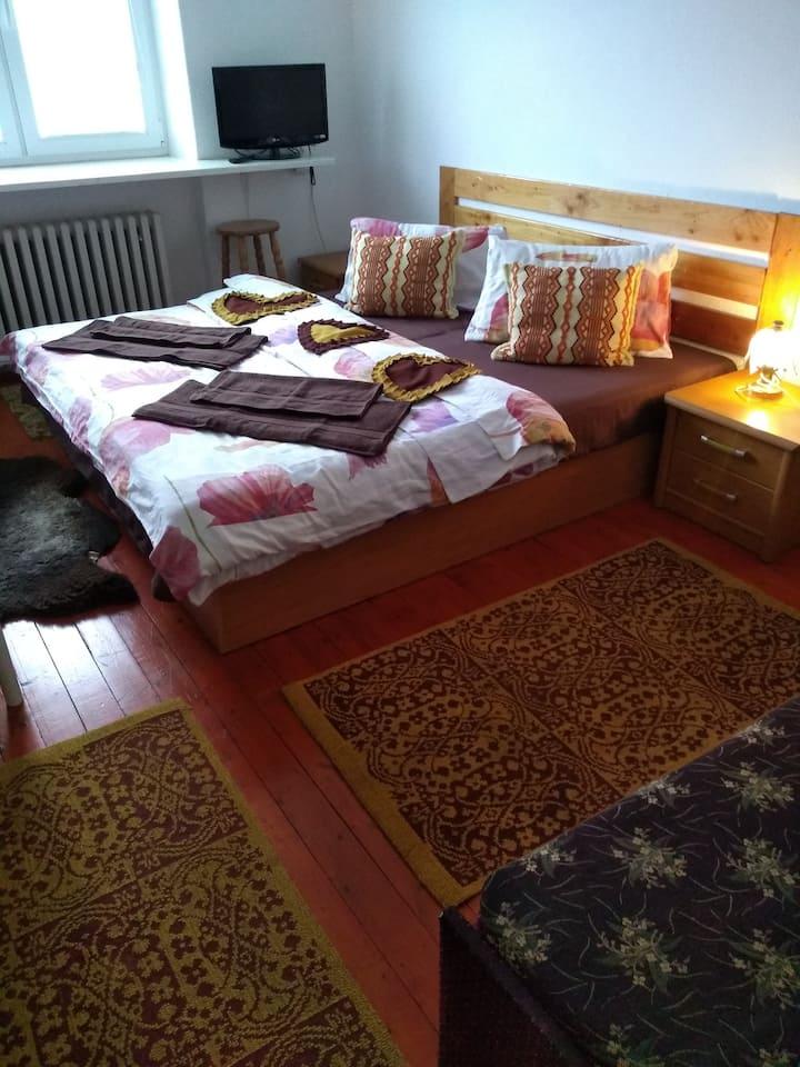 Accommodation Gerlaška