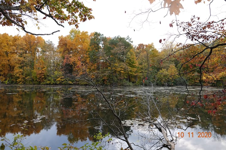 Union Lake Fall Color Retreat and Relax