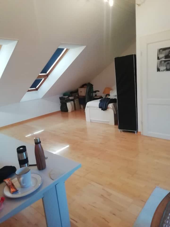 schönes Zimmer im Dachgeschoss/Unikliniknähe-40qm