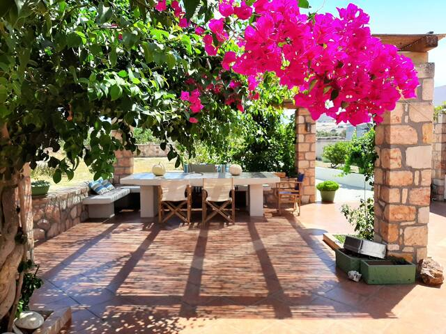 Renas GardenHouse