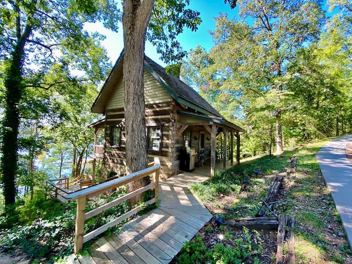 Luxury Log Cabin and 40 Acres on Douglas Lake