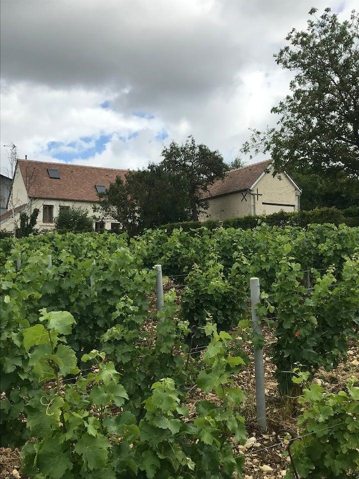 Gîte La Maison de Françoise au coeur des vignes